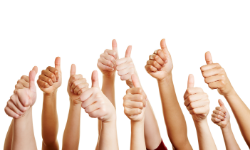 Many hands with thumbs up